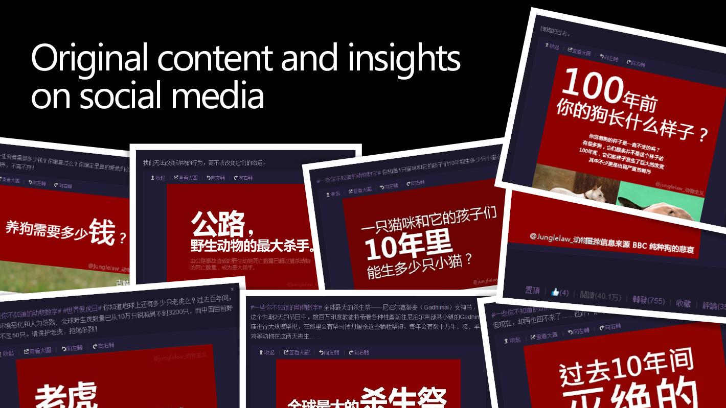 content16